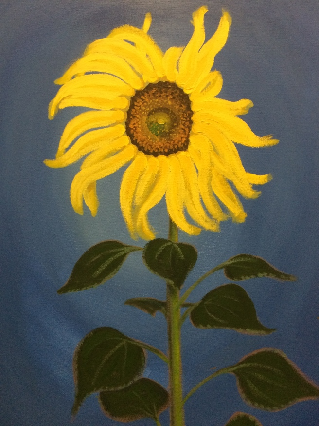 Henry's sunflower