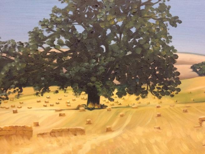 oak in birch panel